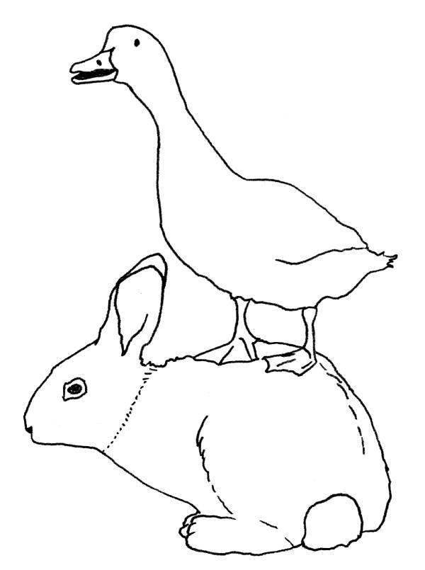 duck-rabbit-no-text